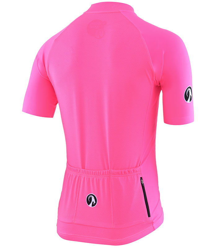 Stolen Goat Fitch Pink men's core bodyline cycling jersey rear