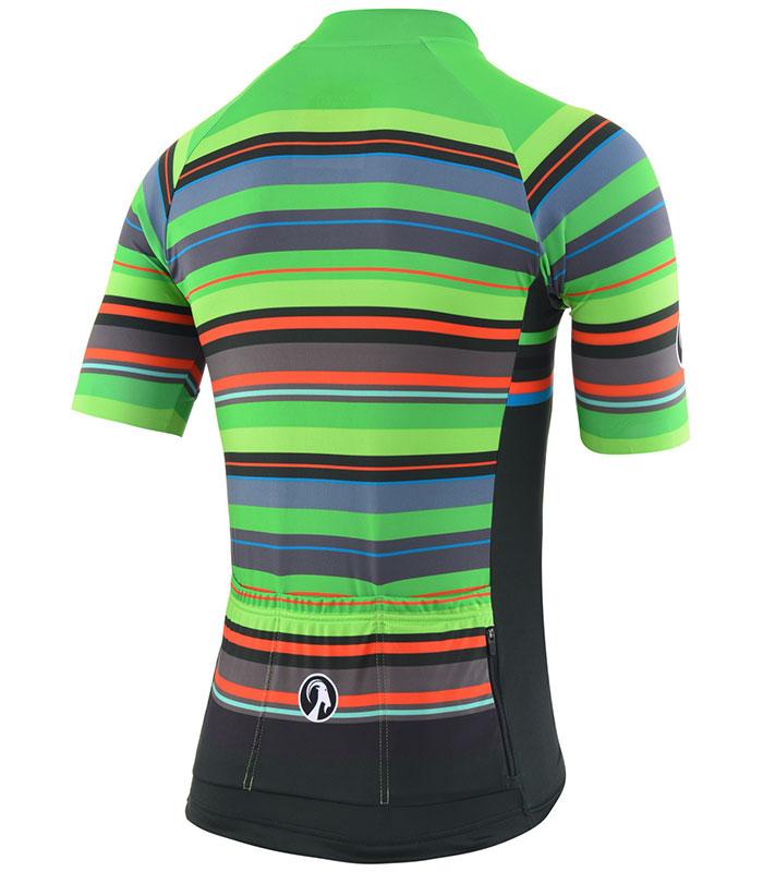 Stolen Goat Hassle men's bodyline cycling jersey rear
