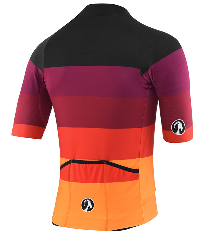 Stolen Goat Zing epic cycling jersey rear