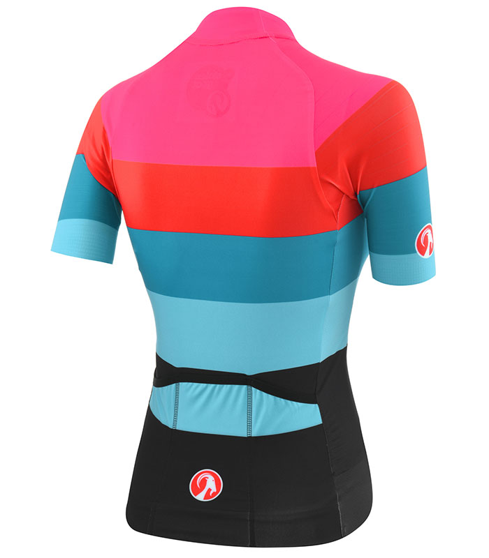 Stolen Goat Elemental epic jersey rear