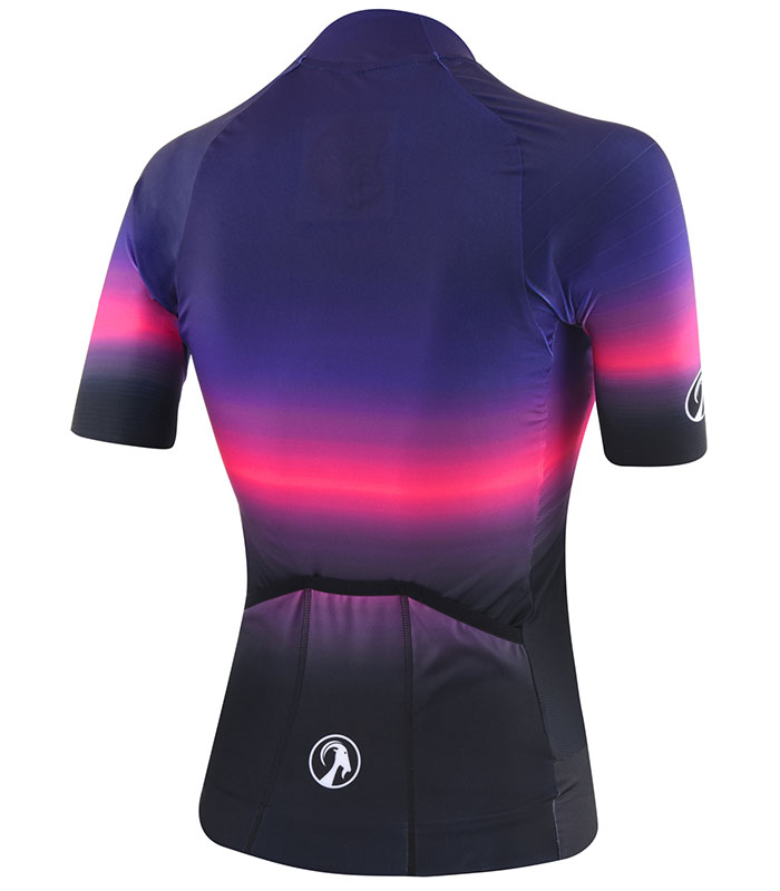 Stolen Goat Filmore epic cycling jersey rear