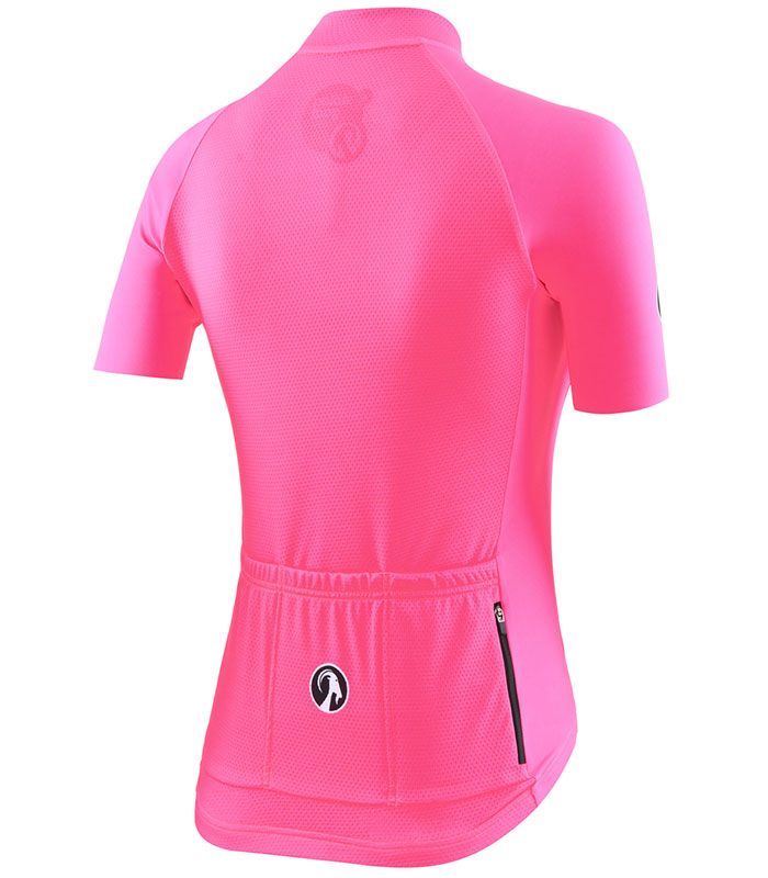Stolen Goat Core fitch Pink Bodyline Jersey rear