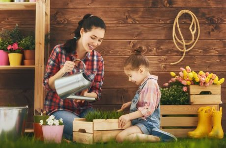 Mastering Home Decorating and Gardening