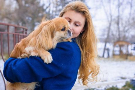 Advanced Diploma in Pet Psychology at QLS Level 3