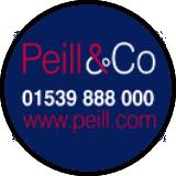Peill logo
