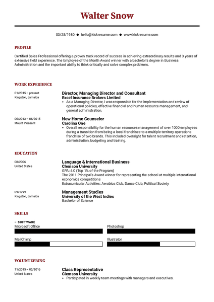 Compact resume template made by Kickresume resume builder
