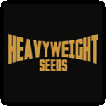 Heavyweight Seeds Cannabis Seeds