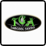 TGA Subcool Seeds Cannabis Seeds