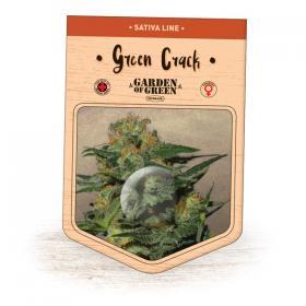 Green Crack Feminised Seeds