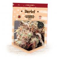 Sherbet Feminised Seeds