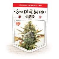 Super Critical Bud CBD Feminised Seeds