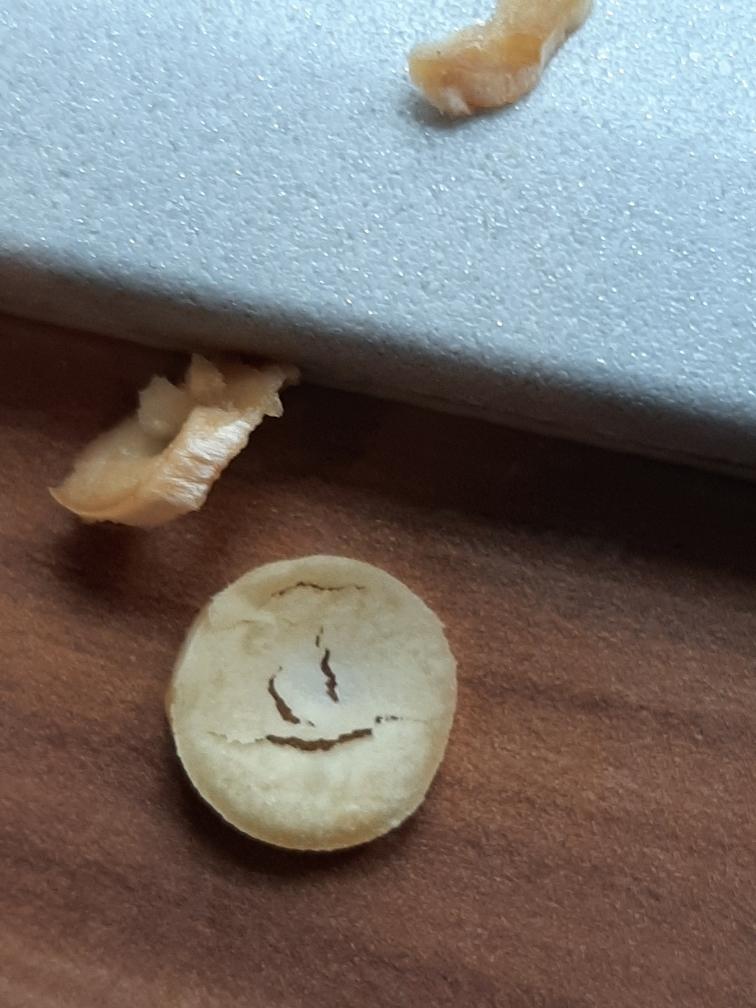 Mushroom peelings
