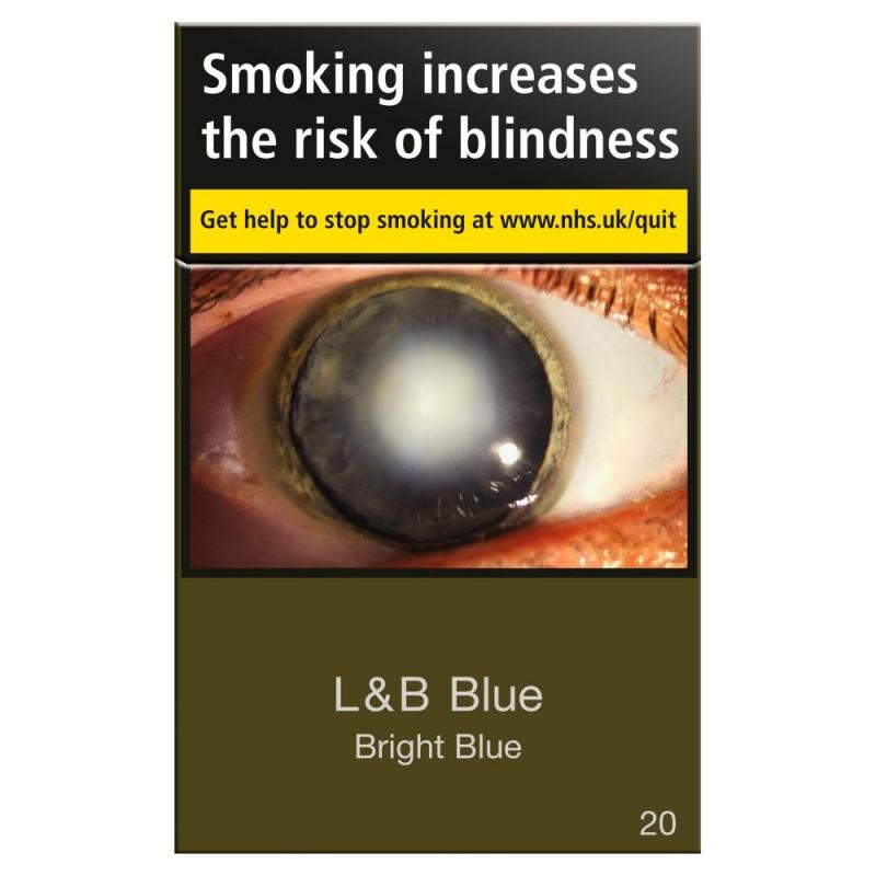 L&B Blue Bright Air Filter King Size