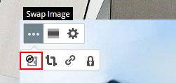 Swap Image