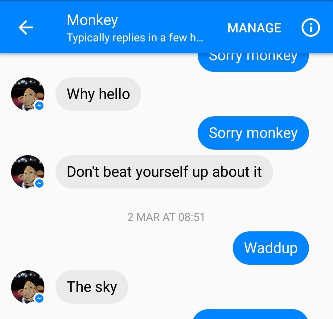 pg_tips_ubisend_monkey_chatbot_waddup.jpg