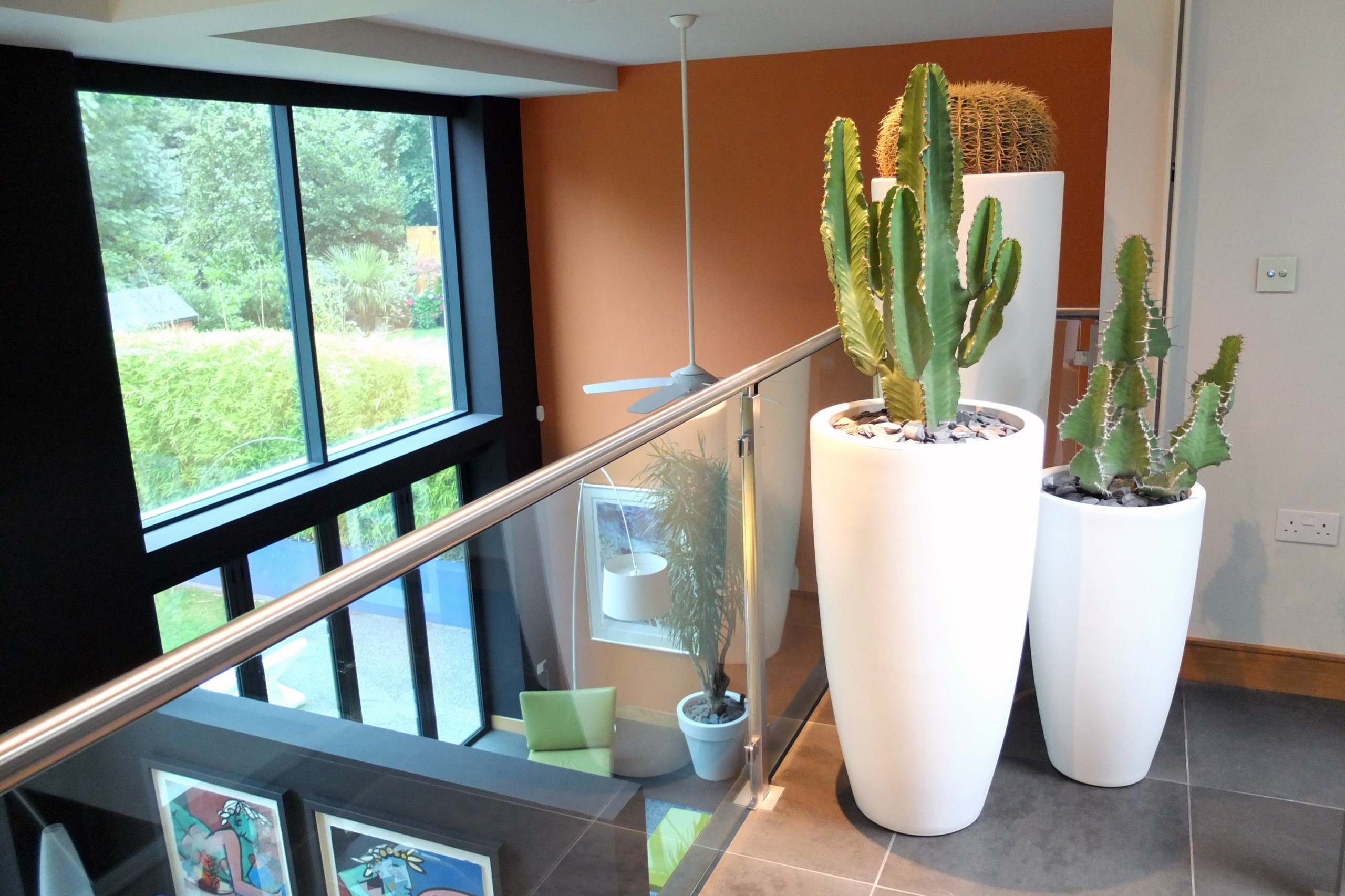 cacti-on-stairwell
