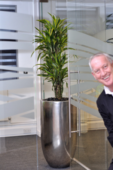 office_plants_Northampton