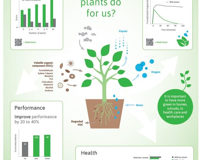 Info_green_infographic