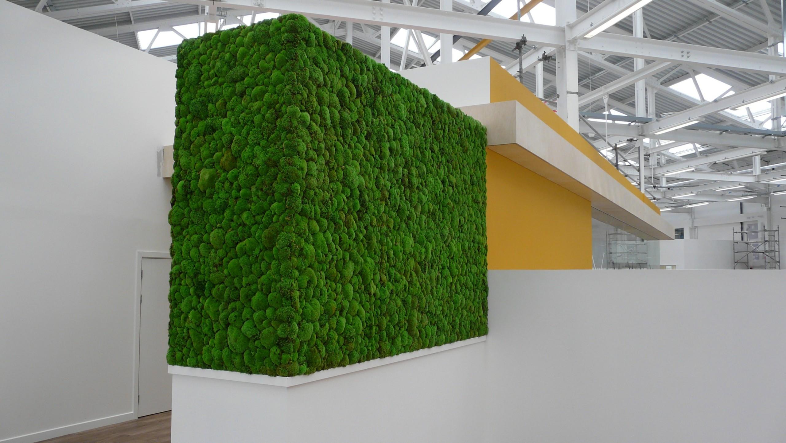 Moss Walls - Regatta