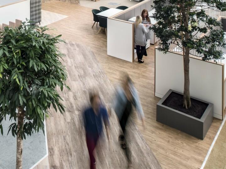 Regatta Large Indoor Trees