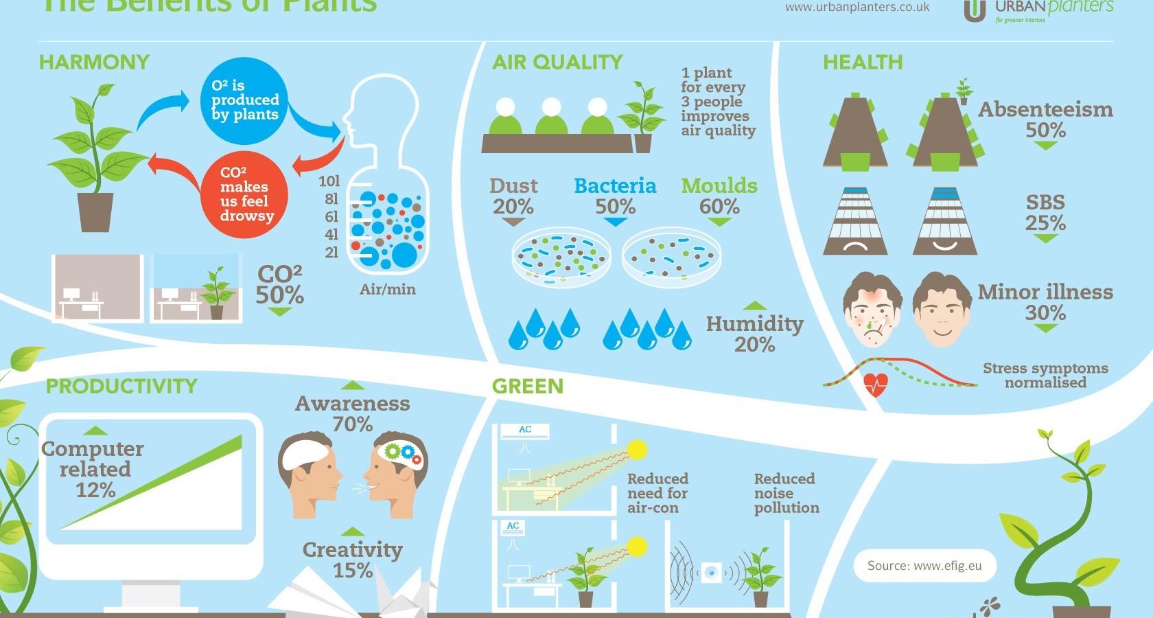 Health Benefits Infographic