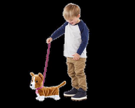 Boy walking Lizzy