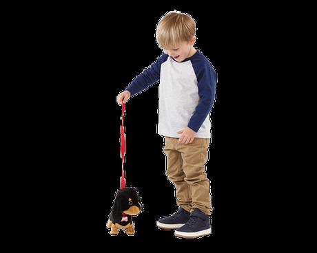 Boy walking Waggles