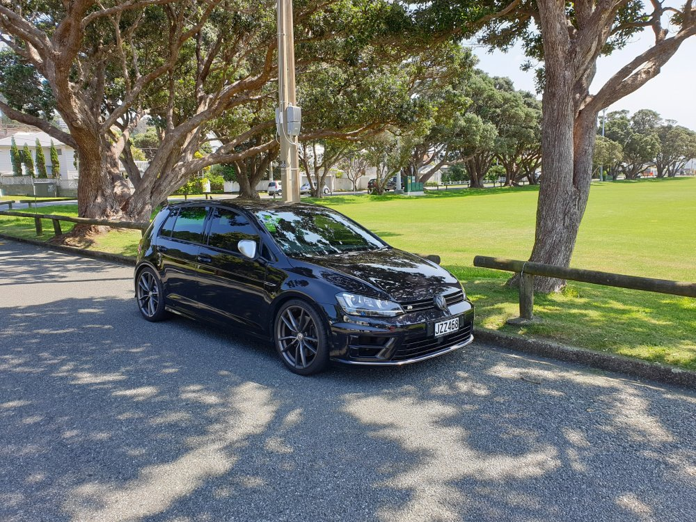 My Golf R at Seatoun Park 6.jpg
