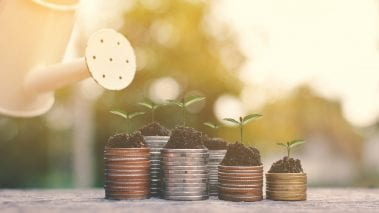 Grow added value