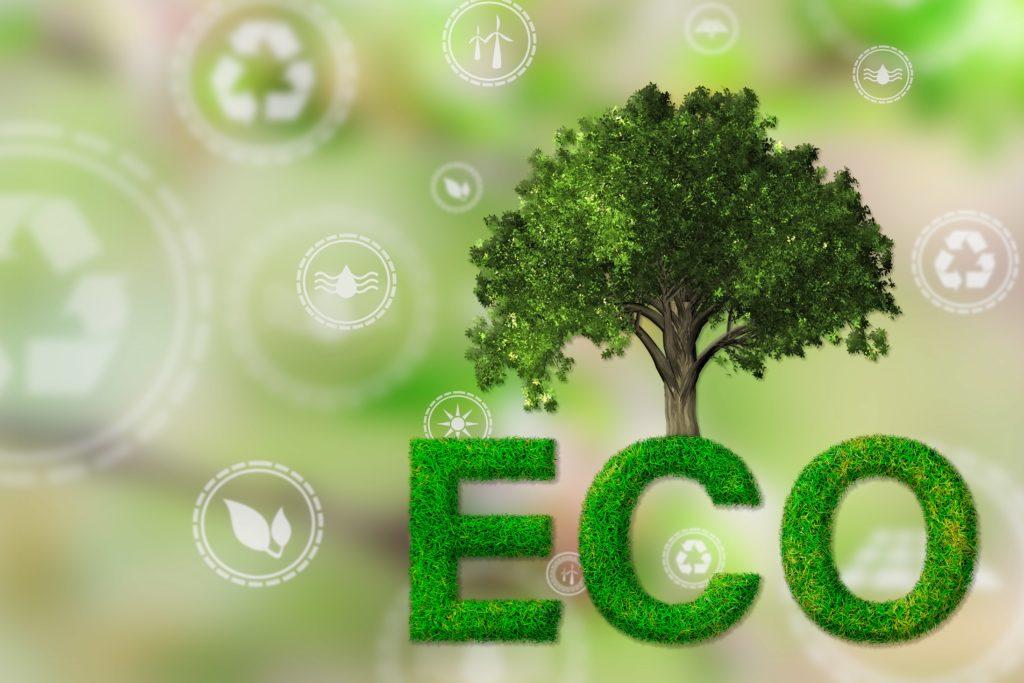 Legge di bilancio 2019 ed ecobonus domotica