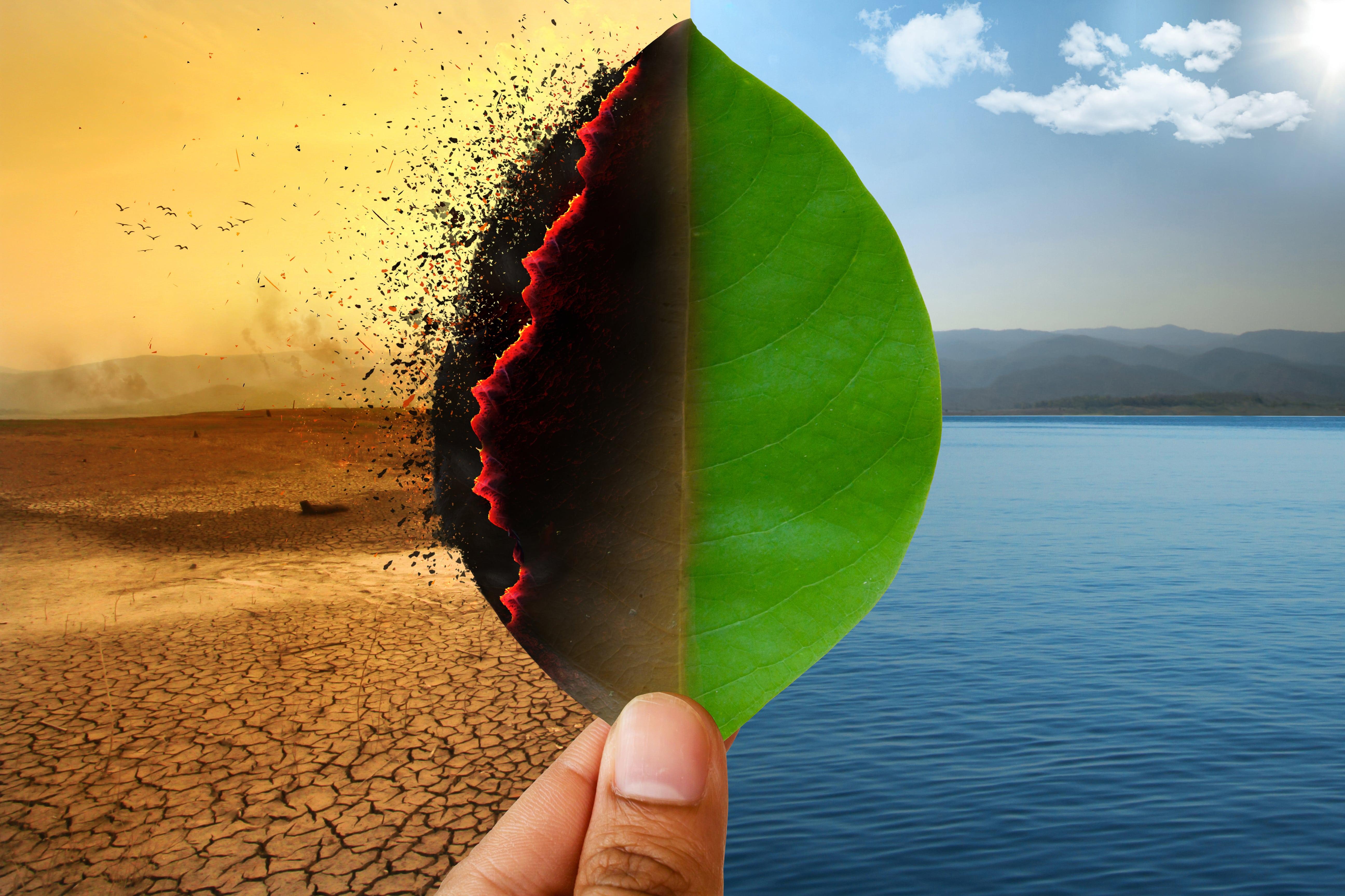 Quando il cambiamenti climatici incidono sulle aziende in borsa