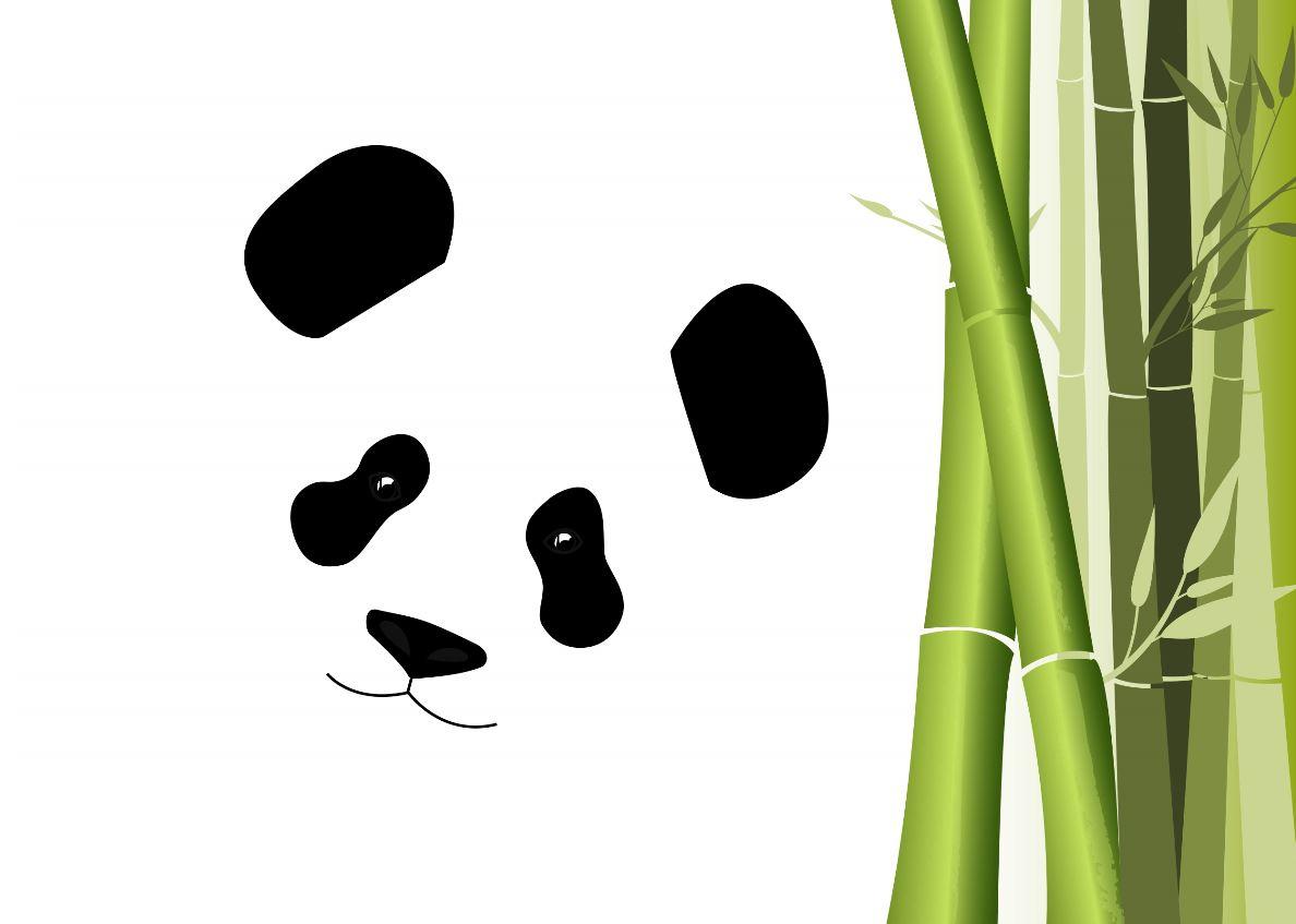 WWF:l'Italia sia l'esempio della plastica monouso