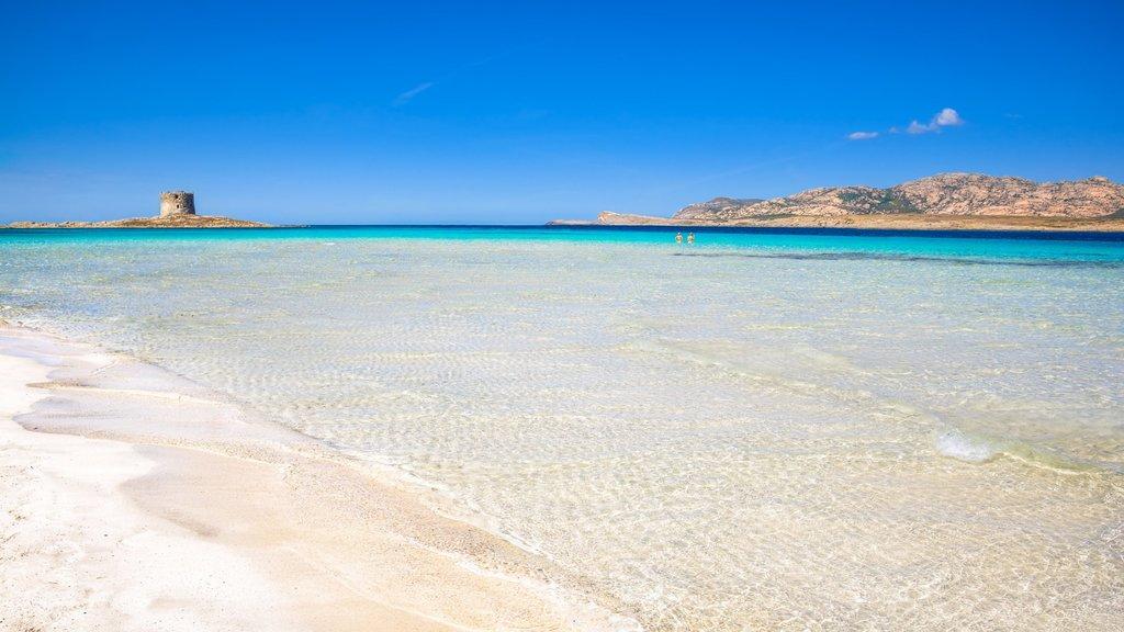 Nuove restrizioni ambientali sulle spiagge: arrivano sulla spiaggia La Pelosa