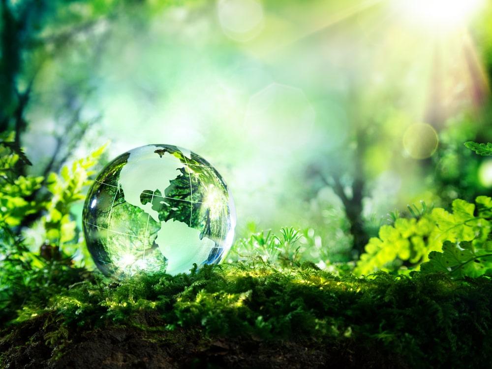 Sostenibilità ambientale cosa significa