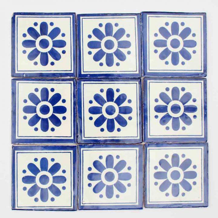 Daisy may blue