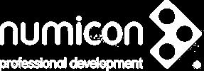 Numicon professional development