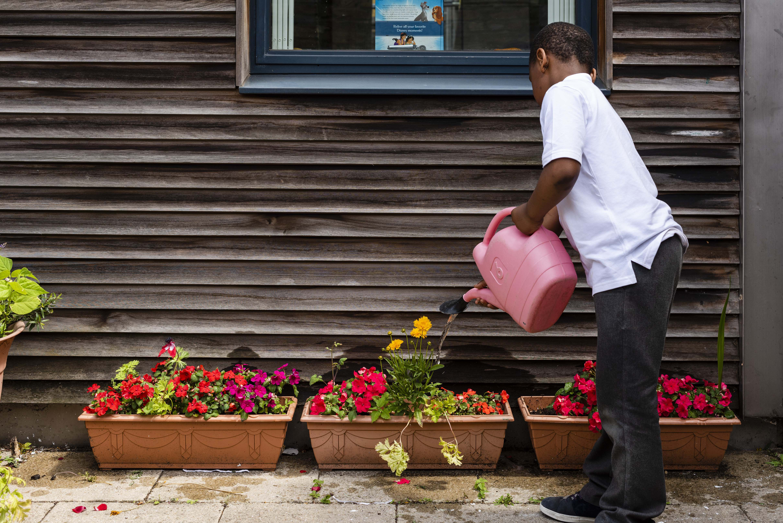Randal Cremer_child watering plants